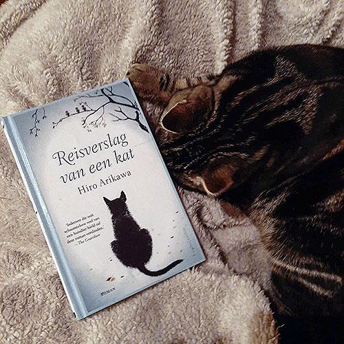 Boek reisverslag van een kat