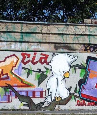 Cockatoo on the wall