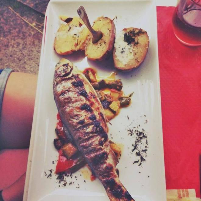Fisch Montsegur Südfrankreich