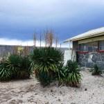Zu Gast auf Robben Island