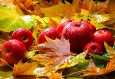 Kodėl rudenį jaučiame nerimą?