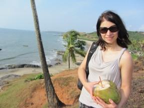 Goa, Indija, 2013 m.