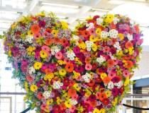 Floristo dovana Lietuvos mamoms – 400 kg gėlių širdis