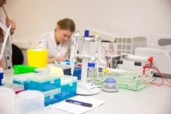 Patvirtinta: nuo rugsėjo 1 d. augs dėstytojų ir mokslininkų atlyginimai