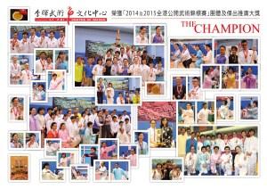 2015 The Champ 武術_17 sep