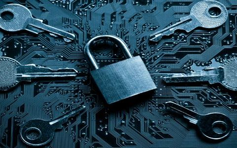 At Least One Critical Vulnerability in Nearly Every Website