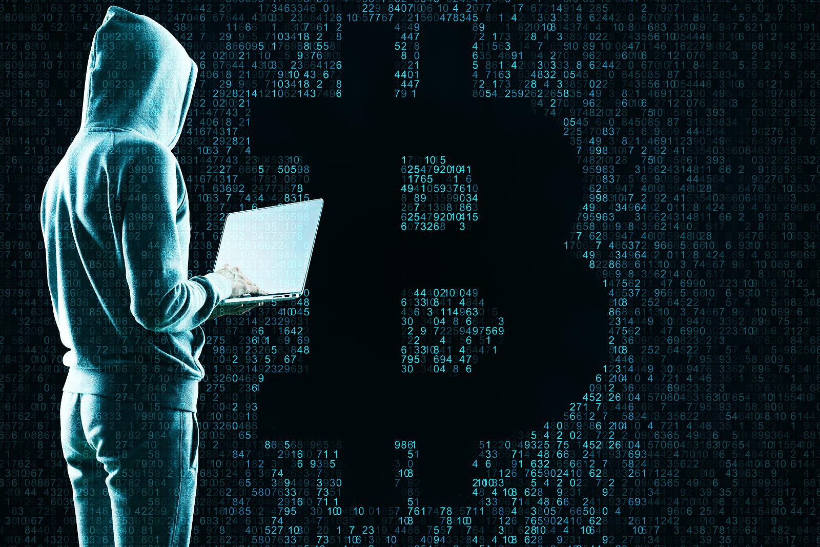 bitcoin trader scam dragons den