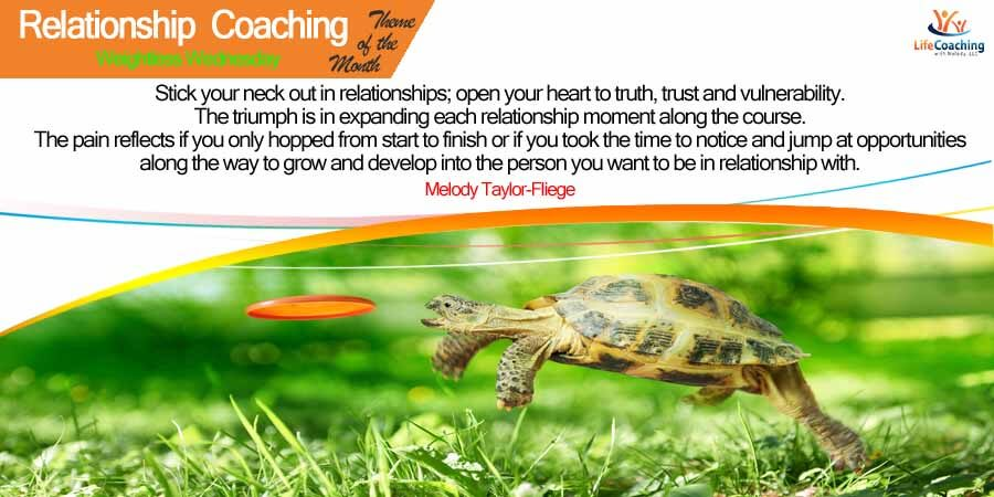Relationships: Are you the tortoise or the hair?