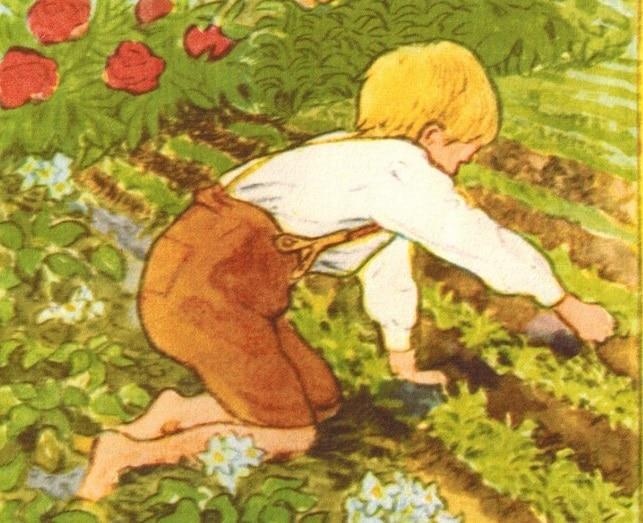 Gardening Teaches a Work Ethic