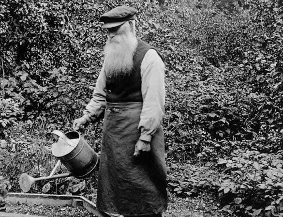 Gardening and Millennials: My Article