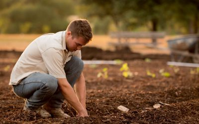 Planting as an Act of Hope