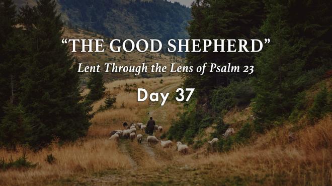Lent 2021 Day 37