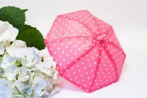 【傘のカビ取り方法】黒カビ・汚れの除去、臭い対策、洗い方などを紹介【折り畳み傘対応】