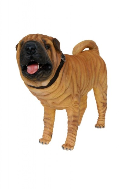 Realistic Models Sculpture Life Sized Model Life Size Replica statue cars Replica Models Dinosaurs life size figurines Albashed Alba shed Shar Pei Dog Realistic Lifesize Model