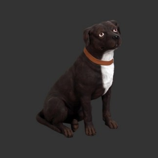 Staffordshire Bull Terrier Lifesize Black Dog Model