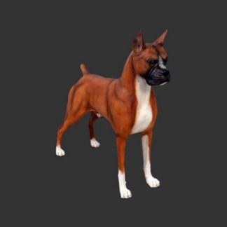 Boxer Dog Lifesize Brown Dog Model