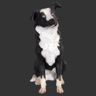 Border Collie Life Size Dog Model