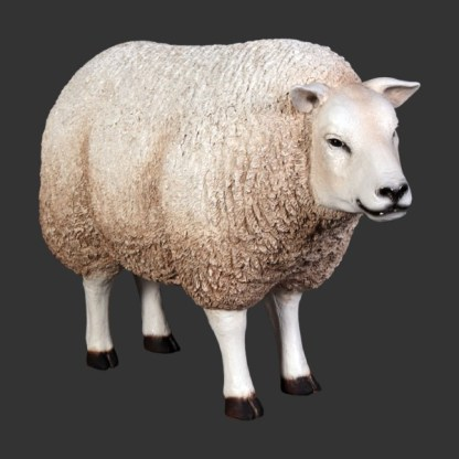 Texelaar Sheep Head Up Life Size Model