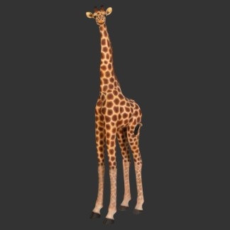 Giraffe 8ft Life Size Model