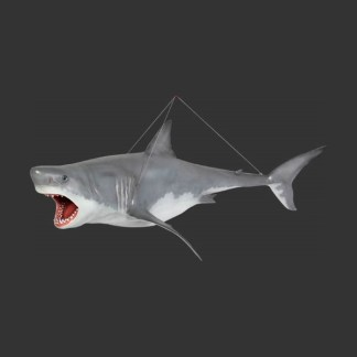 Great White Shark Life Size Model