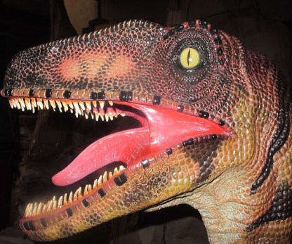 Velociraptor Life Size Model Face Side View