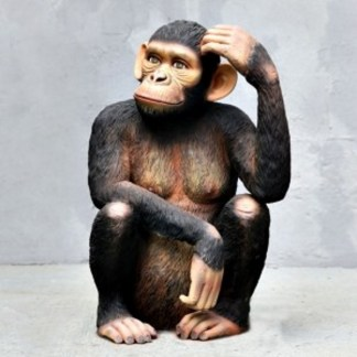 Chimpanzee Sitting life size realistic 3D Wild Animal model