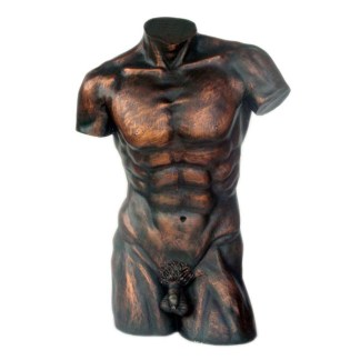Male Torso Bronze Effect 3D Realistic Figure