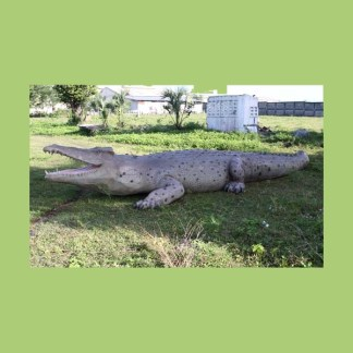 Crocodile 28ft 3D Realistic Life Size Statue