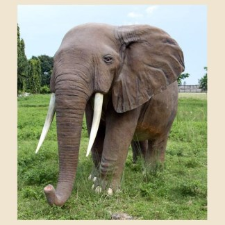 African Elephant 3D Realistic Life Size Statue