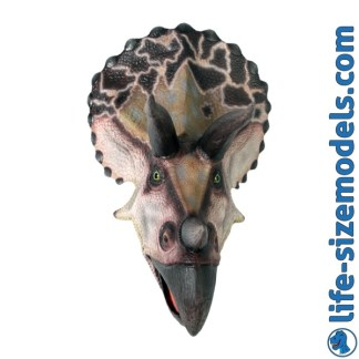 Large Triceratops Head Model