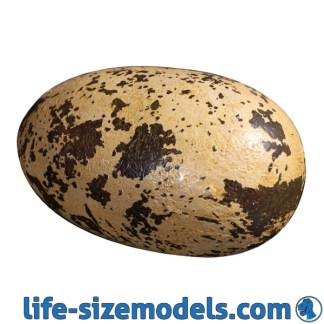 Theropod Egg 9 Inch Model