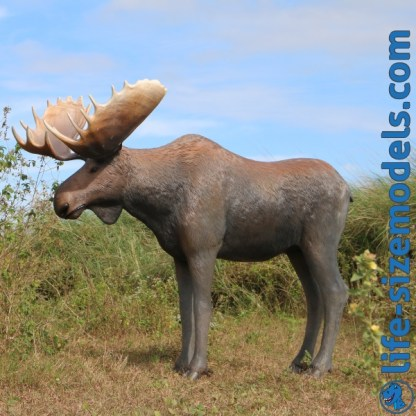 Moose Statue 3D Realistic Lifesize Animal Model