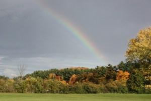fall-rainbow