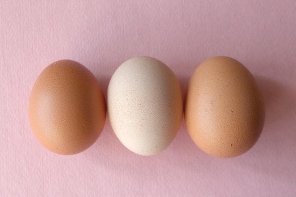 失眠-睡眠品質-雞蛋-色胺酸