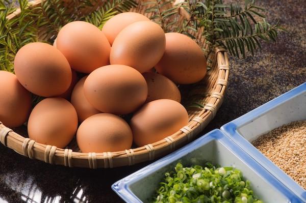 土用丑日-鰻魚節-雞蛋