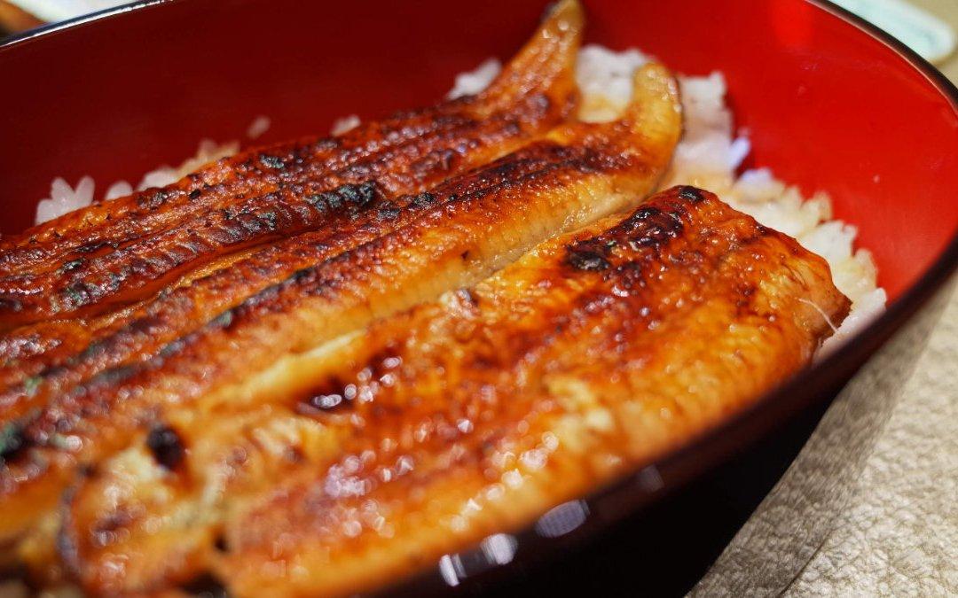 2021 土用丑日吃鰻魚之鰻魚丼、鰻重哪裡不一樣?