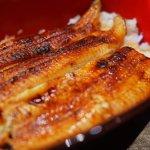 土用丑日-鰻魚節-鰻重-重箱-鰻魚丼飯