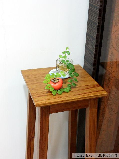 (耐陰植物)攀爬藤蔓植物:薜荔。插枝水耕就能活(簡單)@Life認真過生活
