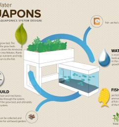 learn about the logic behind the aquaponic system by clicking on the image above  [ 4200 x 3000 Pixel ]