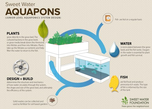 small resolution of learn about the logic behind the aquaponic system by clicking on the image above