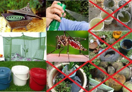 Dengue Prevention