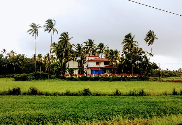 Goa in Monsoon