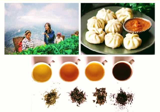Darjeeling-Tea-Trail
