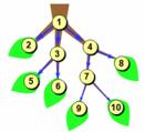 Дерево значений