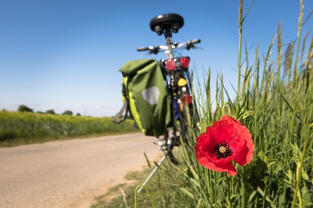 cyklistika 2