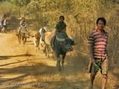 nyaungshwe-inle-IMG_1826
