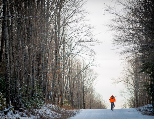 A person in blaze orange rides a bike with a rifle on his back down a file lane with tall trees