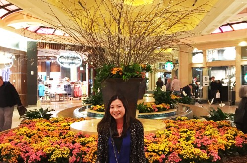Borgata - Flower display