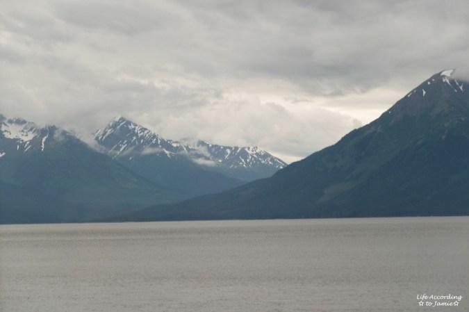 Alaska Rail View 1