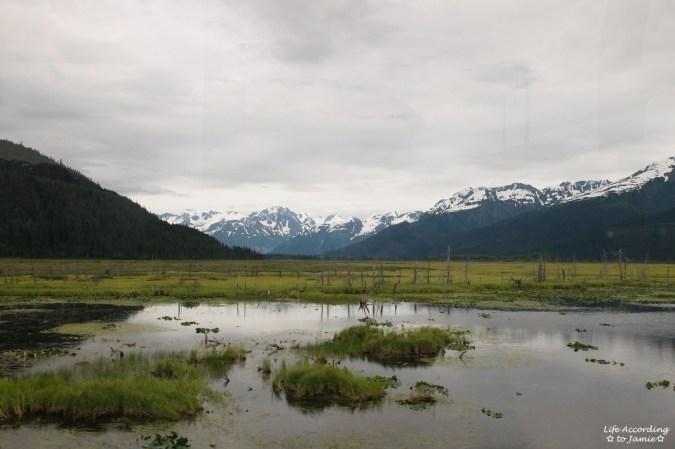 Alaska Rail View 3
